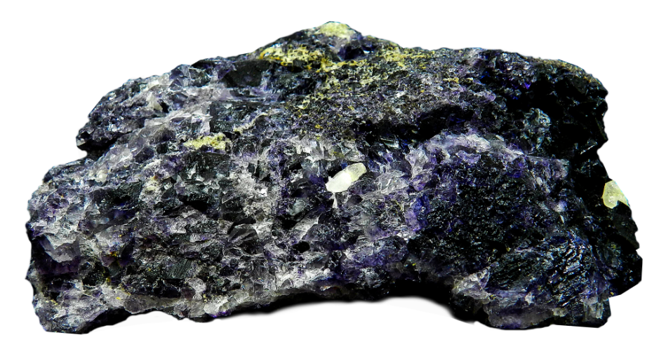 A large lichen-covered rock